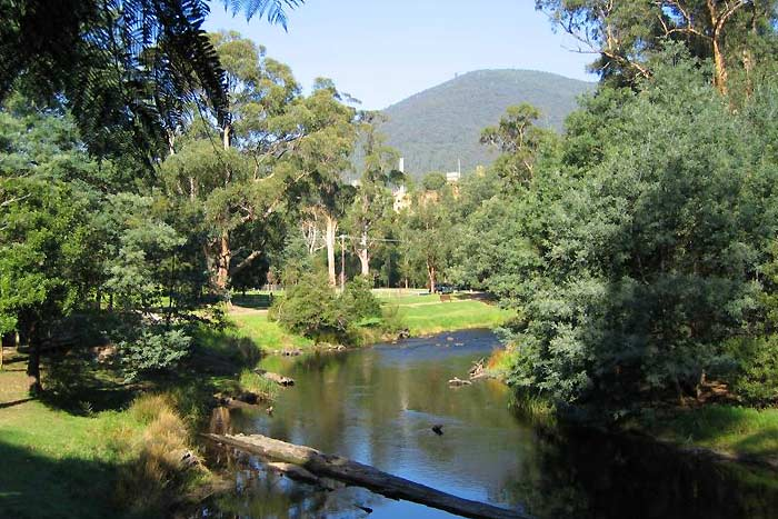 The peaceful Yarra River meanders through Warburton